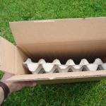 Versandkarton für maximal z.B. 1 kg Mehlwürmer oder Zophobas